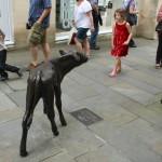 Calf by Richard Cowdy